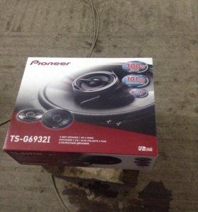 Pioneer 300w max