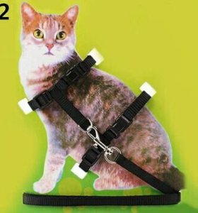 Поводок для кошек и мелких пород собак