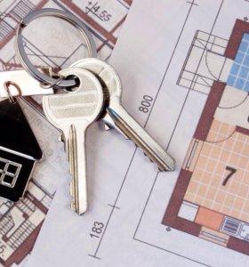 1 комнатная квартира в аренду