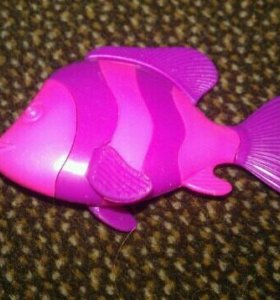 Киндер Рыба
