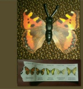 Киндер бабочка