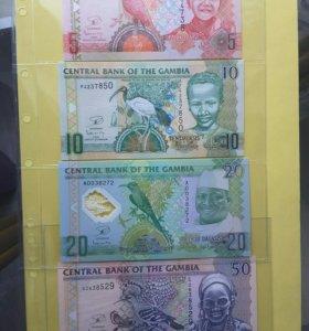 Гамбия, 5,10,20,50 даласи
