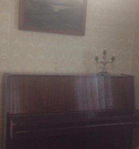 Фортепьяно Petrof