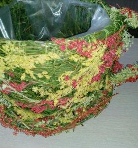 Чаша из сухоцветов .Основа для флористики