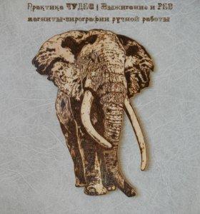 """Магнит-пирография """"Слон"""""""