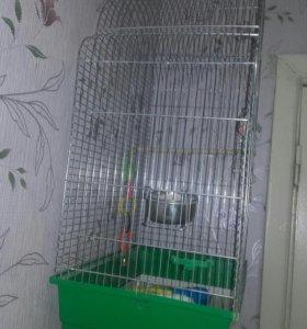 Клетка папугая