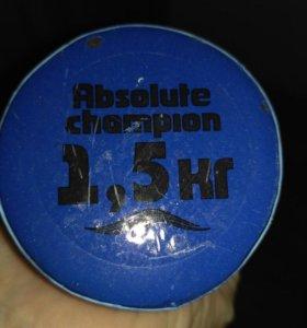 Спортивный инвентарь (диск здоровья и 2 гантели
