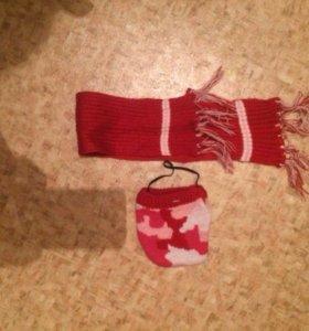 Шапка и шарфик для мини собак