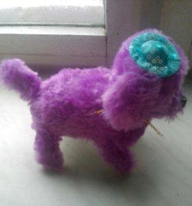 Собака игрушнчная