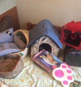 Аксессуары для кошек и собак