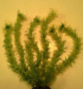 Украшение для аквариума, растения N4