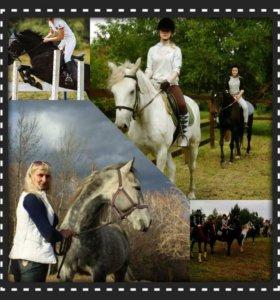 Прогулки на лошадях, обучение