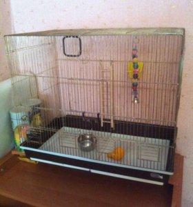 Клетка для домашних птичек