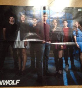4 Плаката / постера  teen wolf