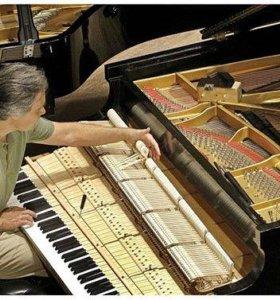 Настройка роялей, пианино