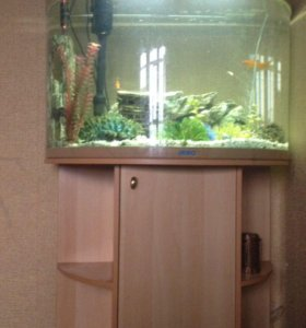 Аквариум тумба с рыбками