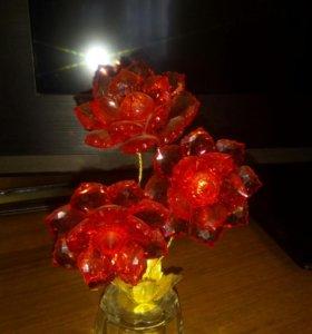 Цветок интерьерный