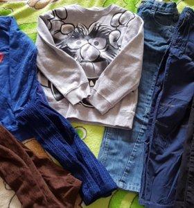 Джинсы, брюки, колготки и толстовки
