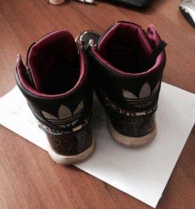 Adidas(original )