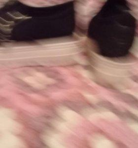 обувь (красовки)