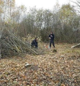 Удаление деревьев и кустарника