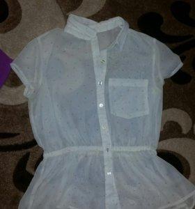 Рубашки блузы