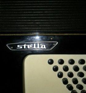 Weitmeister stella (Германия)