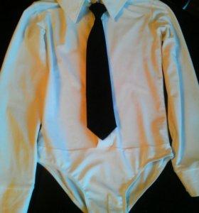 Рубашка для бальных танцев с галстуком