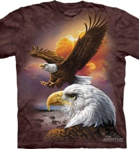 ФУТБОЛКА THE MOUNTAIN - EAGLE & CLOUDS