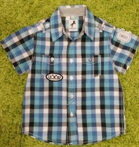 Рубашки для мальчика Palomino