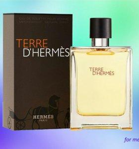 Terre D HERMES 100ml