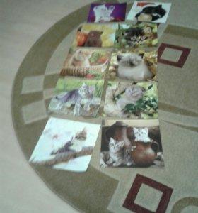 Картинки с котиками одна 15 руб
