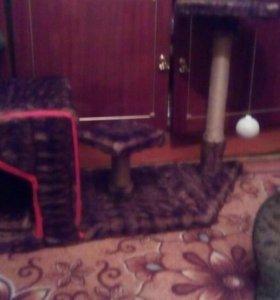 Кошачий дом