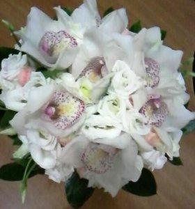 Срезаные Цветы ,  комнатные растения