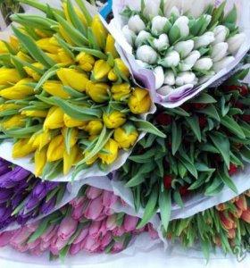 8 марта!!!Предзаказ на тюльпаны