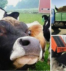 Перепревший коровий навоз.