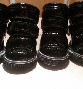 Обувь для собак ( ботиночки, дутыши )