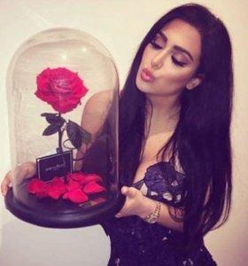 Роза в колбе, вечная роза