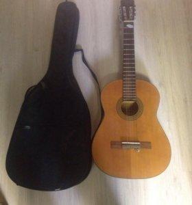 Гитара с чем халял