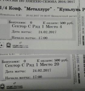 Билет на хоккей 24.02.2017