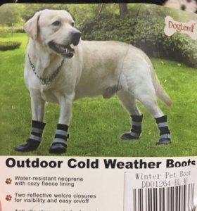 Обувь для собаки