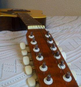 12-ти струнная гитара