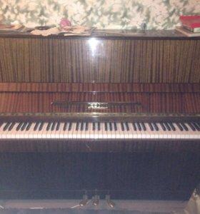 Пианино Ноктюрн