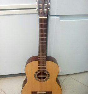 Гитара BRANHER
