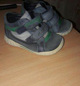 Продам ботинки Ecco .возможен торг .