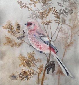 Картина акварелью - птичка