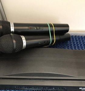 Усилитель с микрофонами defender