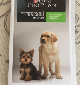 Паспорт для собак и кошек