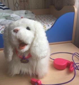 Интерактивный щенок Frf