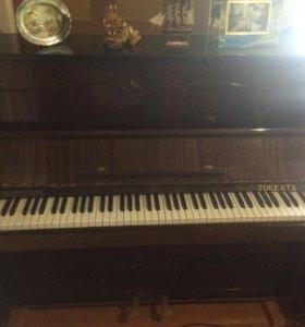 Пианино Токката